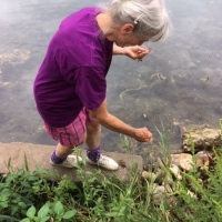 No luck with the lichen, but she found some interesting pond weed.
