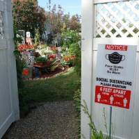 Entry to pond and monarch butterfly nursery 2